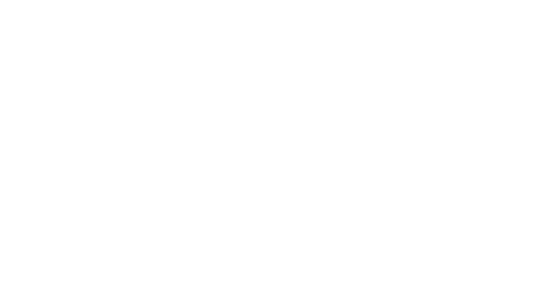 Promoter Nano Wizard Ultra Speed 2 Afm